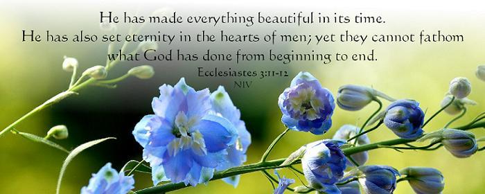 Bible words 5